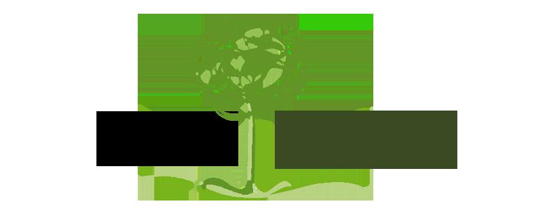logo-aer-transp