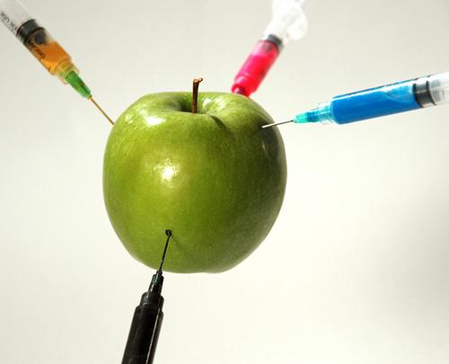 ¿Sabes que son los transgénicos?, Los organismos genéticamente modificados OGM